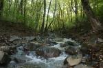hike_4.jpg